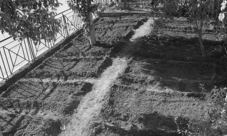 Κάθε σχολείο και το αγρόκτημα του…
