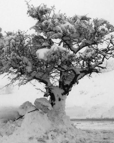Καλό χειμώνα…
