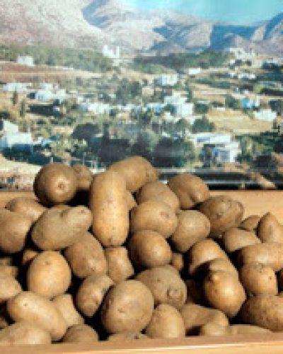 Η ιστορία της … πεντανόστιμης πατάτας