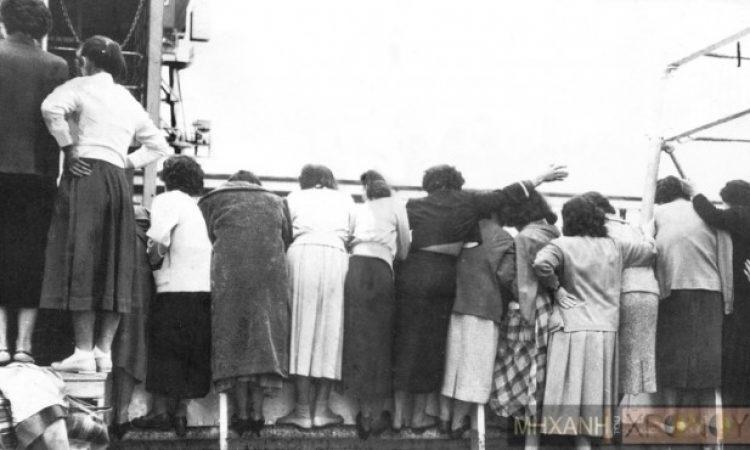 Αυτές οι γυναίκες ταξίδεψαν στην Αυστραλία για να παντρευτούν Έλληνες μετανάστες, που δεν τους είχαν ξαναδεί. Προσπαθούν να αναγνωρίσουν τους γαμπρούς από τη φωτογραφία του προξενιού (φωτό)